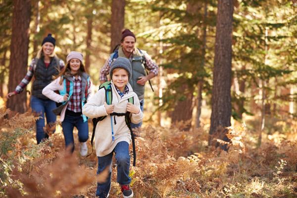 Familie wandert durch den Wald