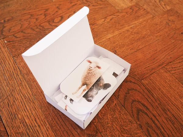 Box für die Aufbewahrung der Puzzle Teile des Spiels Tiere der Zillertaler Bergwelt