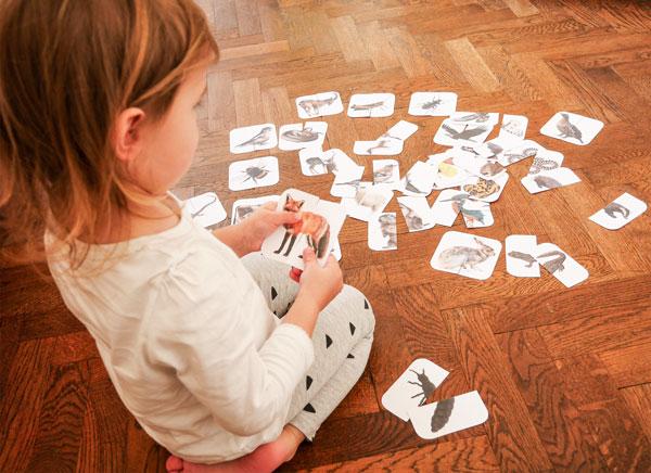 Kleinkind beim Spielen des Mix Match Spiels Tiere der Zillertaler Berge