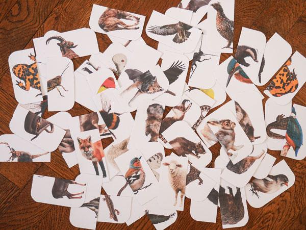 Mix Match Puzzle Spiel Karten